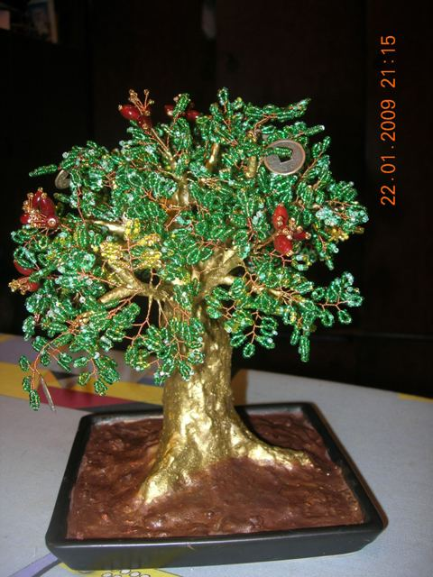 Денежное дерево-дуб.